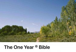 one-year-bible-image